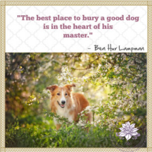 If there are no dogs in Heaven, then when I die, I want to go where ...
