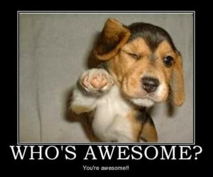 ... little pick me up to get your through Tuesday at work. Who's awesome