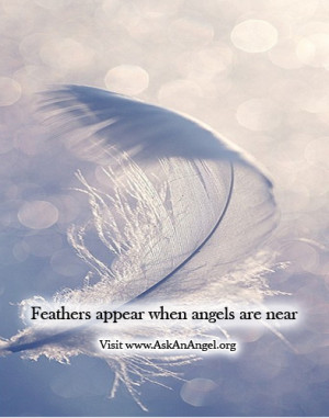 angel feathers from heaven