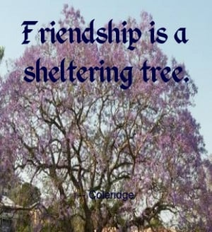 Great quote from Coleridge - trees provide support, shelter, energy ...