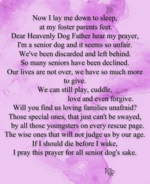 Senior dog prayer....Bandit would never allow another dog in the house ...