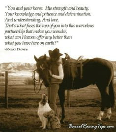 You And Your Horse. His Strength And Beauty - Animal Quote