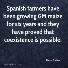 Spanish farmers have been growing GM maize for six years and they have ...