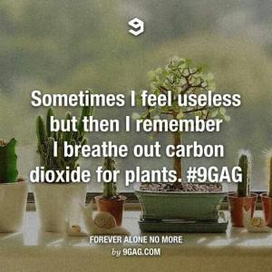 Feeling useless?