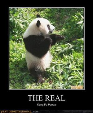 cute panda love quotes cute panda love quotes