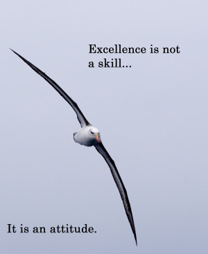 commitment, enjoy your life excellence attitude, excellence quotes ...