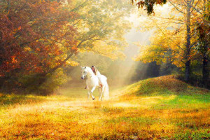 Romantic-Autumn-Wall papers (14)