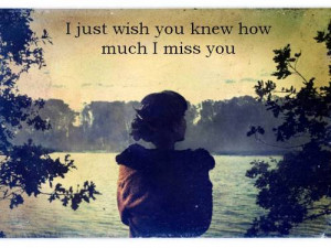 Just Wish You Knew How Much i miss you