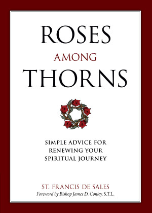 Among Thorns: Simple Advice for Renewing Your Spiritual Journey