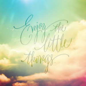 ... enjoy appreciate quote lifequote Enjoy the little things What I need