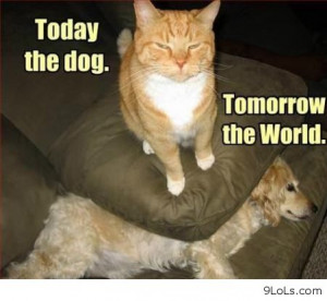 Today The Dog. Tomorrow The World ~ Funny Animal Quote