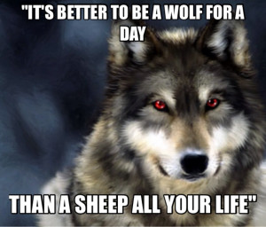 Wolf Love Quotes As requested a wolf with this