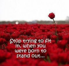 Stop trying to fit in, when you were born to stand out. More