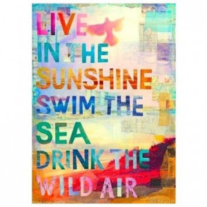 ... some fun summer quotes to celebrate the good weather and good times