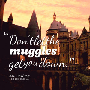 Quotes Picture: don't let the muggles get you down