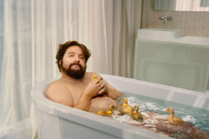 comedian, comedy, funny, lol, zach galifianakis