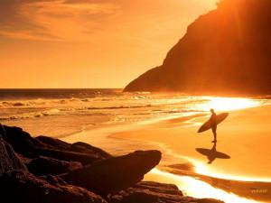 Download Sunset Surf backgrounds Desktop Wallpaper in high resolution ...