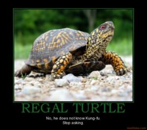 regal-turtle-slow-steady-turtle-last-place-race-demotivational-poster ...