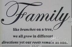 Family Reunion on Pinterest