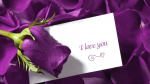Love You Quotes Flower Background HD Wallpaper I Love You Quotes ...