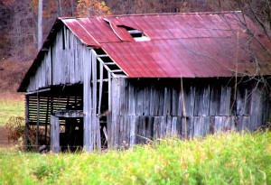 Description Abandoned horse barn in autumn fall.jpg