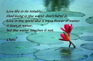 quote-live life in its totality