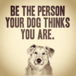 ... Quotes, Best Friends, Pet, High Standards, Puppys, Mom Quotes, Animal