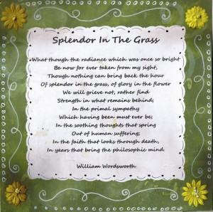 splendor in the grass poem william wordsworth quotes