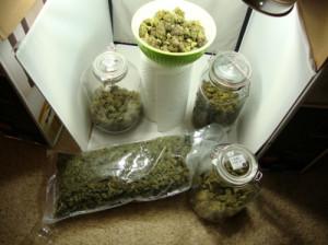 20, awesomeness, joint, marijuana, need, stupid, weed