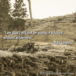 ... aldo leopold by susan on february 21 2014 in wilderness quotes i am