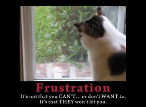 FrustrationDaisy