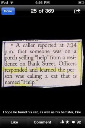 lml #cats #help #police #photos #funny #lol #lmao #lmfao