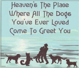 dogs+in+heaven.jpg