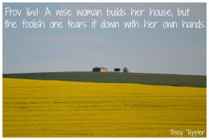 Proverbs 16 v 1: EVERY WISE woman builds her house, but the foolish ...