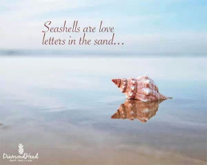 Seashells are love letters in the sand ♥♥♥ ocean beach quotes