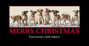 merry christmas greetings-cute dogs-santa's yelpers-funny