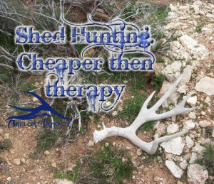 Shed Hunting. Cheaper then therapy #huntingquotes #quotes #shedhunting ...