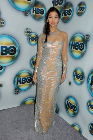 Janina Gavankar Dress