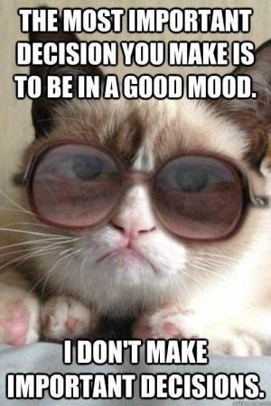like a good neighbor grumpy cat meme