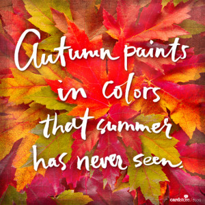 Happy First Day of Fall! - Cardstore Blog