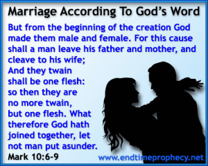 Biblical Marriage / Divorce / Adultery Graphic 04
