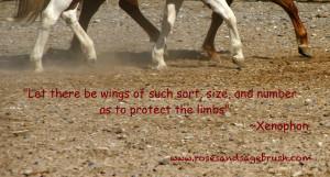 Xenophon Quotes About Horses ~ Xenophon – On Horses | Ethology ...