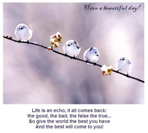 Have A Beautiful Day, Life Is An Echo, It All Comes Back The Good, The ...