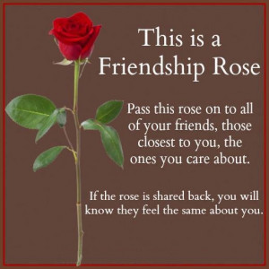 This is Friendship Rose...