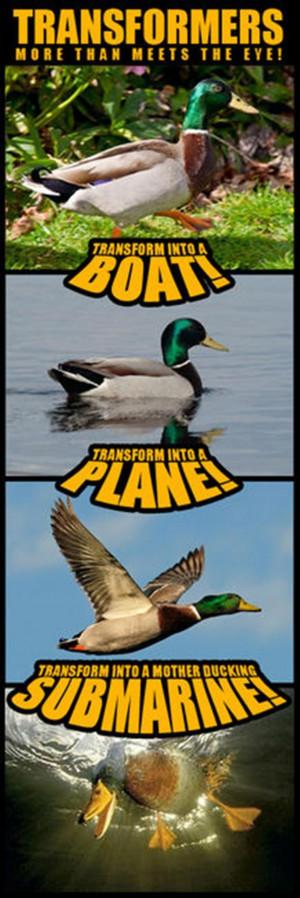 Funny Transformers Memes (14)