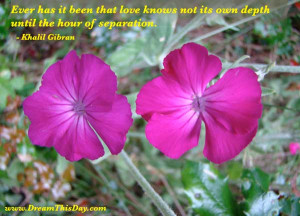 ... it been that love knows not its own depth until the hour of separation