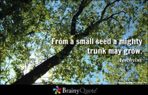 From a small seed a mighty trunk may grow. - Aeschylus