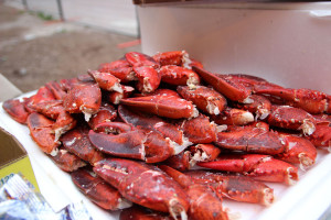 Lobster Love 3) lobster love.
