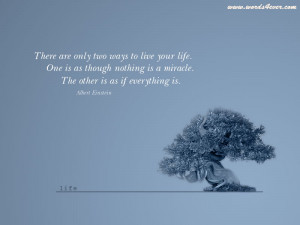Trees Quotes Wallpaper 800x600 Trees, Quotes, Bonsai, Miracle, Albert ...