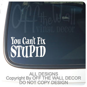 Quote-Vinyl-Lettering-You-Cant-Fix-Stupid-Vinyl-Car-Truck-Decal ...